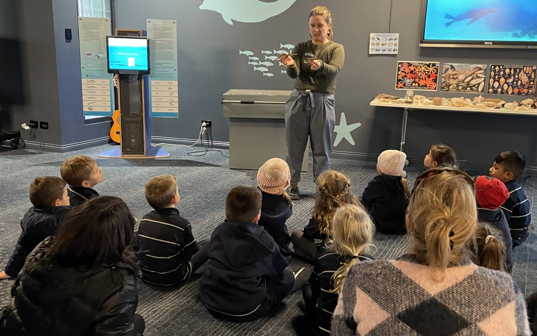 Reception excursion to Marine Discovery Centre